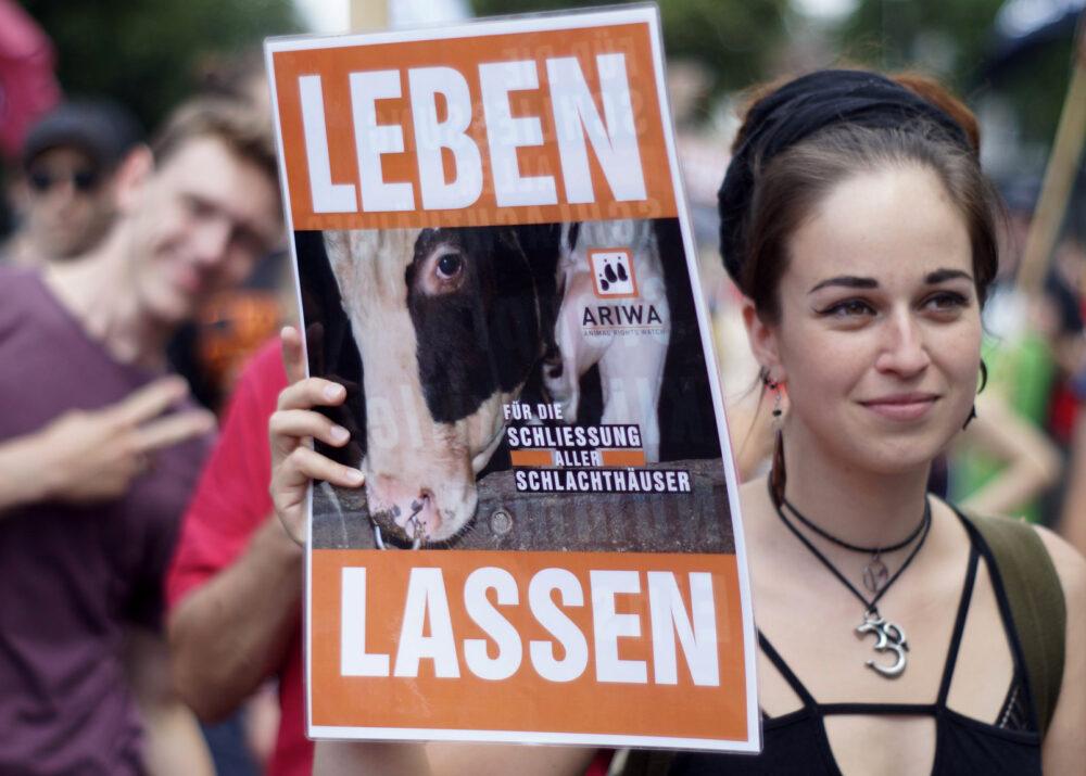 Großdemo in Göttingen: Schließung aller Schlachthäuser 2018